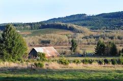 Azienda agricola rurale del granaio del paese Immagine Stock Libera da Diritti