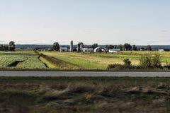 Azienda agricola rurale di Ontario con l'agricoltura del Canada degli animali di agricoltura di stoccaggio del silo del granaio Fotografie Stock Libere da Diritti