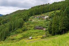 Azienda agricola rurale giapponese sui pendii di montagna Scena rurale di agricoltura Immagini Stock Libere da Diritti