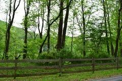 Azienda agricola rurale occidentale del paese di NC immagini stock