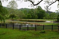 Azienda agricola rurale occidentale della montagna del paese di NC immagini stock
