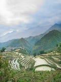 Azienda agricola in Sapa Fotografie Stock Libere da Diritti
