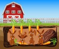 Azienda agricola sotterranea vivente del coniglio royalty illustrazione gratis