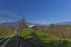 Azienda agricola sotto le montagne Fotografia Stock