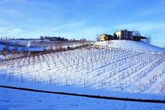 Azienda agricola sulla parte superiore del wineyard Immagine Stock Libera da Diritti