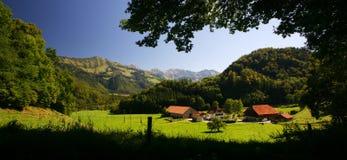 Azienda agricola svizzera Fotografia Stock Libera da Diritti