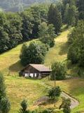 Azienda agricola svizzera Fotografie Stock Libere da Diritti