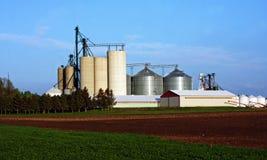Azienda agricola tradizionale con il silo Immagine Stock Libera da Diritti