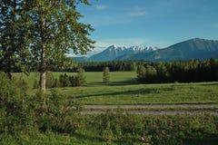 Azienda agricola, valle del fiume Columbia, BC, il Canada Fotografie Stock Libere da Diritti