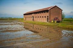Azienda agricola a Vercelli, Italia Fotografia Stock Libera da Diritti