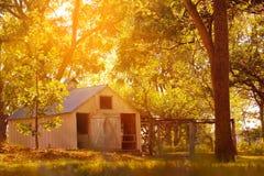 Azienda lattiera e granai americani nella stagione di autunno Fotografia Stock Libera da Diritti