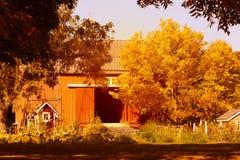 Azienda lattiera e granai americani nella stagione di autunno Fotografie Stock Libere da Diritti