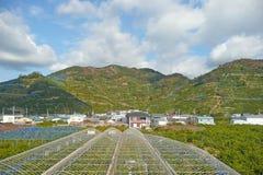 Aziende agricole della montagna Immagine Stock Libera da Diritti