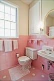 łazienek menchie Zdjęcie Royalty Free