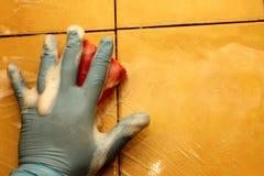 łazienki cleaning Zdjęcia Stock