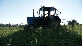 Azionamenti del trattore sopra il giacimento della patata Raccogliendo le patate con per mezzo del trattore video d archivio