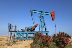Azionamento al suolo di una pompa della pollone-barretta durante il funzionamento del pozzo di petrolio fotografia stock libera da diritti