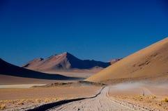 Azionamento del Altiplano della Bolivia Fotografia Stock Libera da Diritti