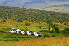Azionamento del gioco di safari in Maasai Mara National Reserve, Kenya Fotografia Stock