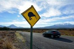 Azionamento dell'automobile attraverso il parco nazionale di Tongariro Immagini Stock Libere da Diritti