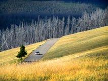 Azionamento dell'automobile sul paese Fotografie Stock