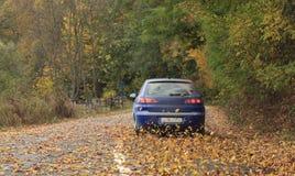 azionamento di autunno Fotografie Stock Libere da Diritti