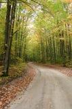 Azionamento di autunno Fotografia Stock Libera da Diritti