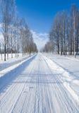 Azionamento di inverno Immagine Stock Libera da Diritti