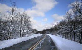 Azionamento di inverno Immagini Stock