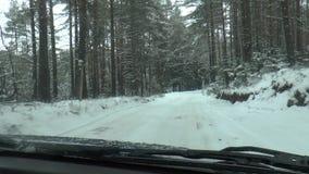 Azionamento di inverno - strada di inverno video d archivio