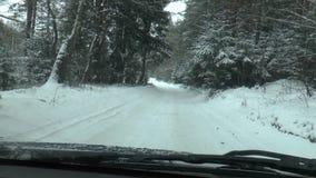 Azionamento di inverno - strada di inverno stock footage