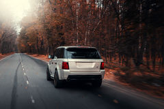 Azionamento di Rover Range Rover Sport della terra dell'automobile sulla strada asfaltata alla foresta di autunno Fotografia Stock