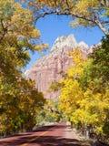 Azionamento scenico del canyon di Zion in autunno immagine stock
