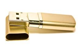 Azionatore del disco del USB dell'oro Immagini Stock Libere da Diritti