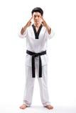 Azione del Taekwondo Immagini Stock