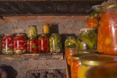 Azione della drogheria per l'inverno 3 Fotografie Stock Libere da Diritti