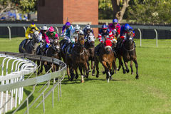 Azione di corsa di cavalli Fotografia Stock Libera da Diritti