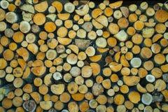 Azione di legna da ardere Fotografie Stock