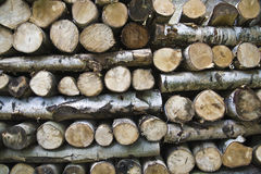 Azione di legno Immagini Stock