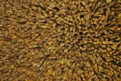 Azione di legno del caffè Fotografie Stock