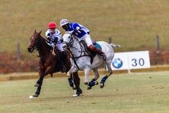 Azione di Polo Ball Players Ponies Game Immagine Stock Libera da Diritti