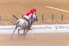 Azione di Polo Riders Girl Horse Play Fotografia Stock Libera da Diritti