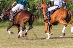 Azione di Polo Riders Horses Unidentified Game Immagini Stock Libere da Diritti