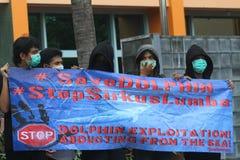 Azione per proteggere i delfini dall'affare del circo Fotografia Stock