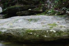 Azione piane del fondo del masso di fiume del ` affascinante della roccia del ` grandi fotografie stock