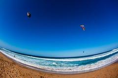 Azione praticante il surfing del vento del cervo volante   Fotografia Stock