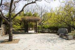 Azja chińczyk, Pekin ogród botaniczny, wiosny sceneryï ¼ ŒWooden drzwi, drewniany ogrodzenie Zdjęcia Stock