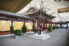 Azja chińczyk, Pekin, Chiny Ogrodowy muzeum, salowa powystawowa sala Obrazy Royalty Free