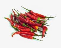 Azja chili świeży pieprz Obrazy Royalty Free