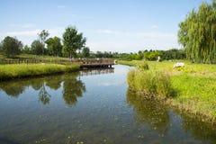 Azja Chiny, Pekin, Changyang park, Ogrodowy sceneryï ¼ Œwooden most fotografia royalty free